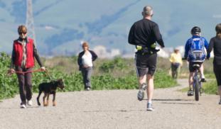 Banner jogging path 2