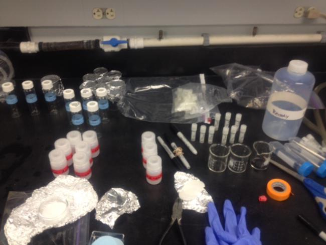 In the field: We have samples – with your help we will